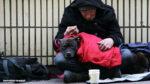 helft unseren obdachlosen dresden verein afd martina jost