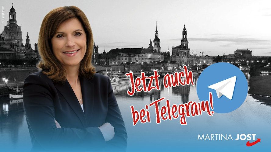 Martina Jost Telegram AfD Dresden AfD Sachsen